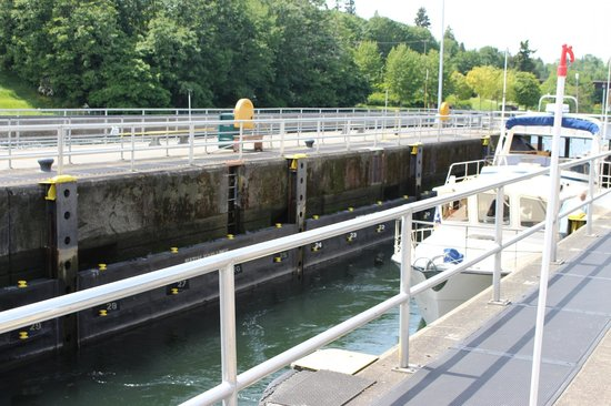 Hiram M. Chittenden Locks: Lock in use