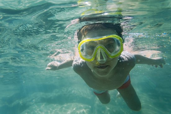 The Coastal Activity Park: Immerse yourself in the natural environment and join a guided snorkelling tour