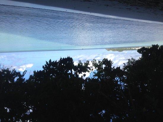 The Westin Resort Guam: ホテル前のビーチより