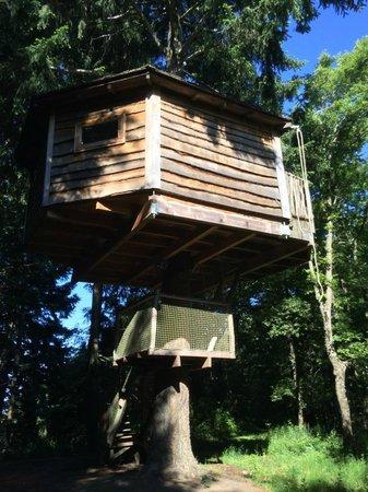 Cabanes als Arbres : Treehouse