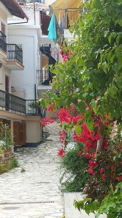 Hotel Acropol: Bakgården
