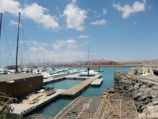 Oceanarium Explorer : port