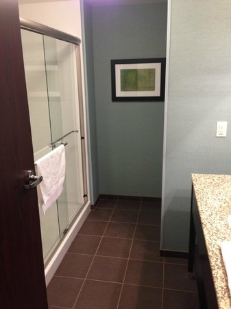 Hampton Inn And Suites York South : very clean bathroom
