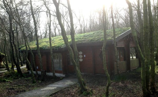 Chevin Country Park Hotel & Spa: Log cabin in the woods