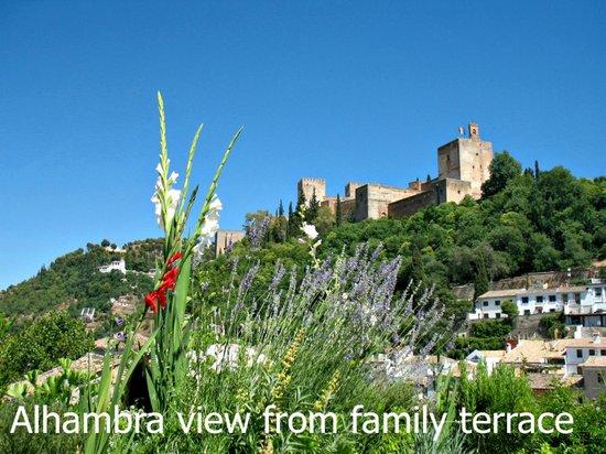 Apartamentos Muralla Ziri: Vista Alhambra desde la terrraza familiar
