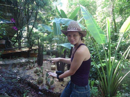 Sanya Tropical Paradise: По маршруту