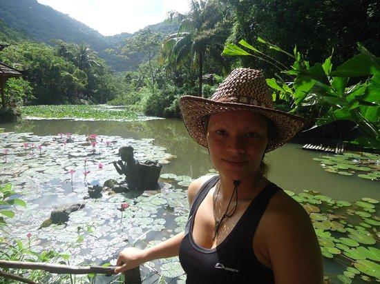 Sanya Tropical Paradise: На озере с лотосами