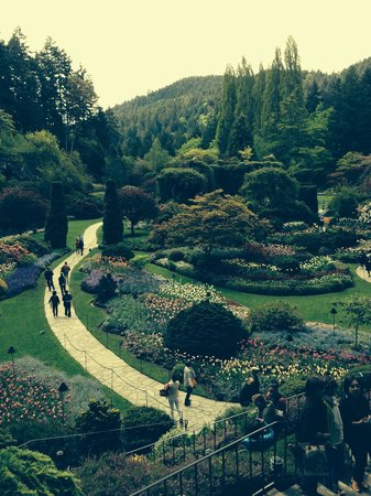 Landsea Tours and Adventures : Butchart Gardens Awesome!