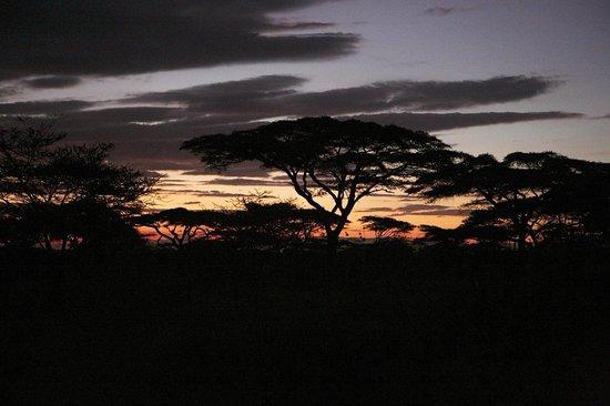 Ndutu Safari Lodge: Sunset