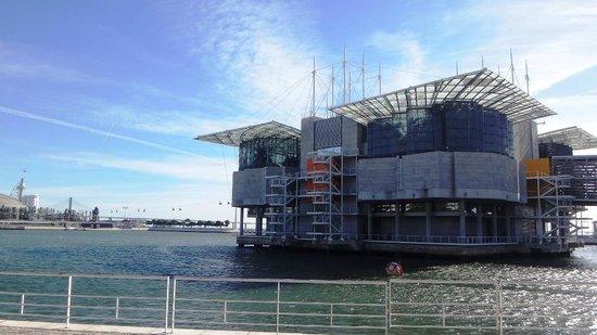Aquario Vasco da Gama: Oceanário Lisboa