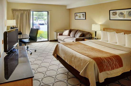 Comfort Inn Sydney: Newly renovated guest room with queen size bed.