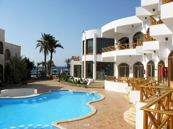 Red Sea Relax Resort: 100m2 Pool
