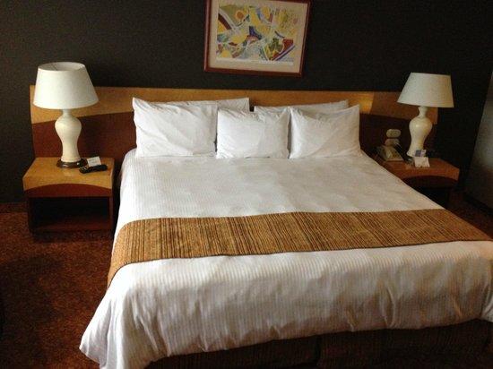 Radisson Hotel Flamingos: HAB ESTANDAR SGL
