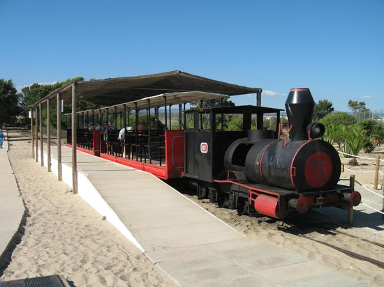 Praia do Barril : The miniature train to Barril Beach from Pedras del Rei