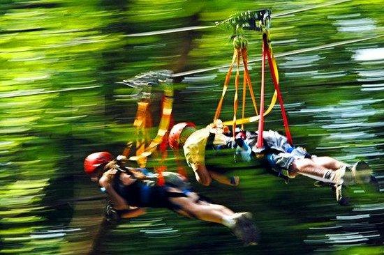Hocking Hills Canopy Tours: Dual Racing Super Zip