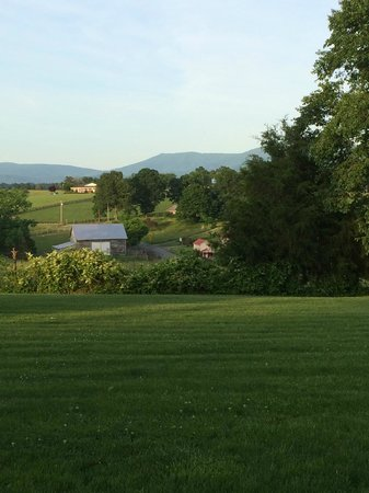 Piney Hill Bed & Breakfast: beautiful View