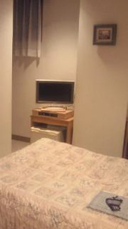 Kanayama Plaza Hotel: テレビと冷蔵庫。サービスの水が入っている