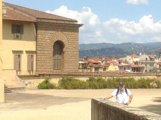 Palazzo Pitti: view of Florence