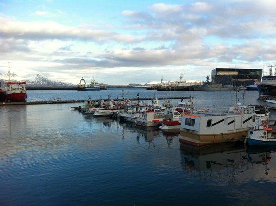 Baldursbra Guesthouse: A proximité le port de Reykjavik
