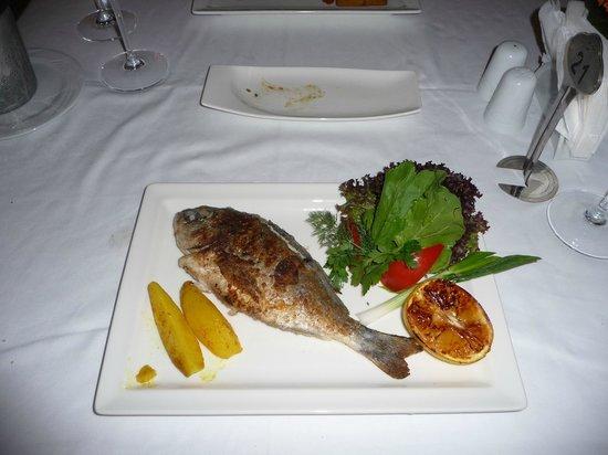 Xanadu Island: Dorade Aegean Restaurant...