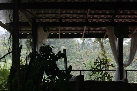 Princesa de la Luna Eco Lodge: Terraza; view on the jungle & the volcano!