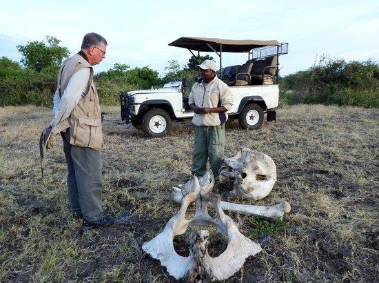 Imbabala Zambezi Safari Lodge : Our Safari Guide, Abe