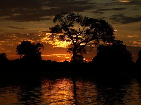 Imbabala Zambezi Safari Lodge: Sunset on the Zambezi