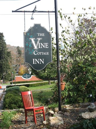 Vine Cottage Inn: Visit of the Red Chair