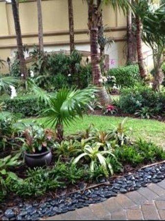 Vanderbilt Beach Resort: Garden in front of our room