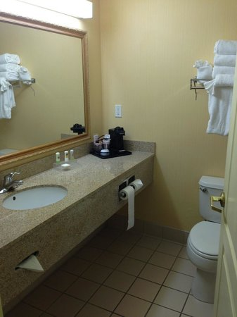 Country Inn & Suites By Carlson, Port Canaveral : Bathroom and toilet