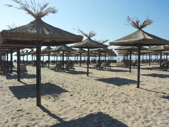 Hotel Admiral : Beach