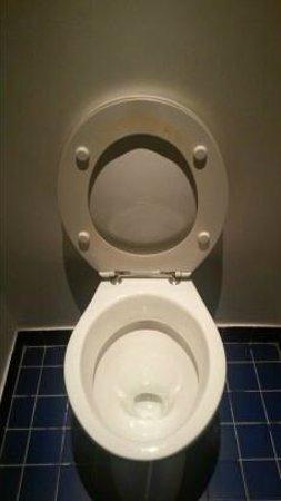 Explorers Hotel: Copri WC sporco