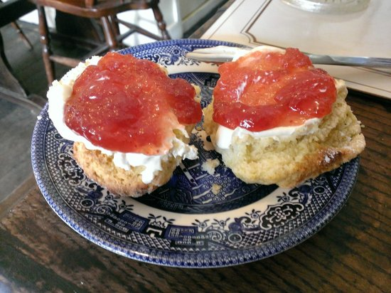 The Captains Cottage: Warm scone, clotted cream and strawberry jam. Yum!