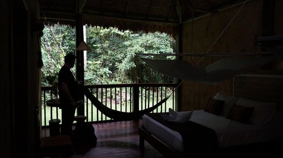 Posada Amazonas: You can hear howler monkeys