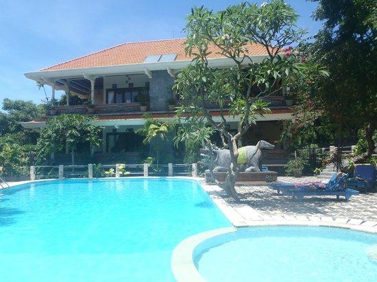 Hotel Amed Cafe : piscine