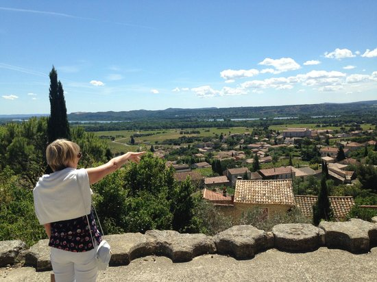 Le Verger des Papes: Scenic views across the valley to the Rhone