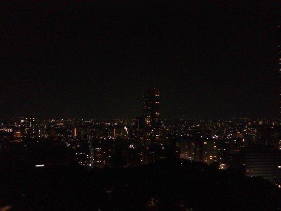 Hyatt Regency Tokyo : 部屋からの夜景