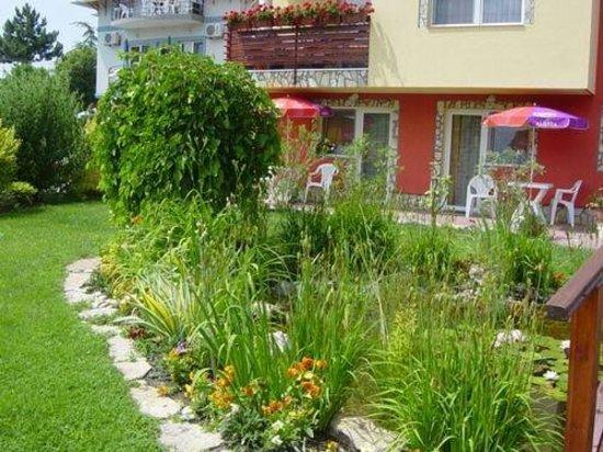 Veronika Villa: A tó és a csodálatos növények