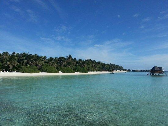 Meeru Island Resort & Spa : View from honeymoonsuite