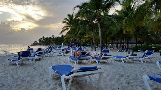 Viva Wyndham Dominicus Beach : Bella spiaggia di Dominicis Beach Bayahibe