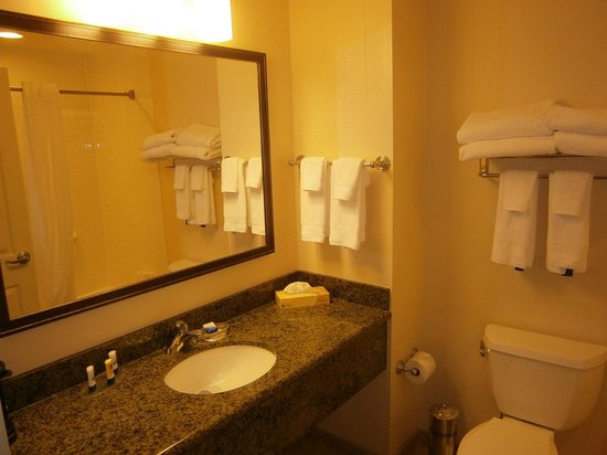 Best Western Plus The Inn at King of Prussia: Bright and Clean Bathroom with Good Shower Water Pressure