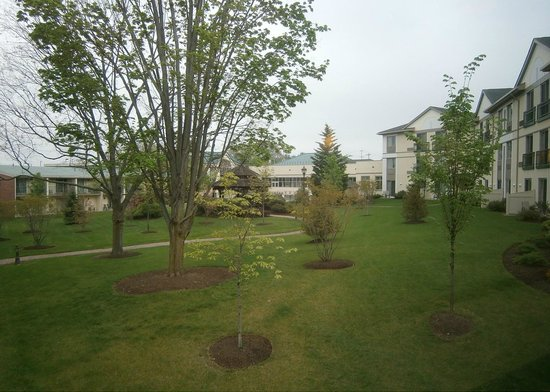 Best Western Plus The Inn at King of Prussia: Courtyard Area (Original Wing to Left, Newer Building to Right)