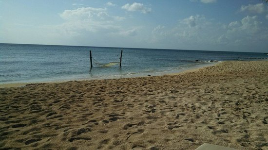 Secrets Aura Cozumel : This hammock in the sea..got tremendous use.