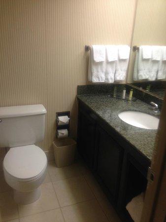 DoubleTree by Hilton Hotel Newark Airport: Bathroom