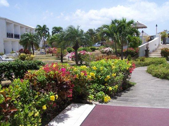 Coyaba Beach Resort : Beautiful gardens