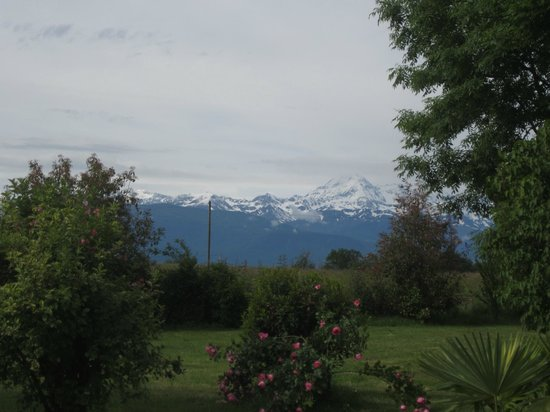 The Barns Dans Les Pyrénées : The view of the Pyrenees from my room