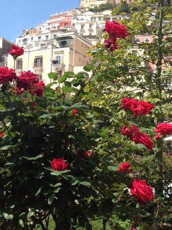 Hotel Palazzo Murat: Pallazo Murat garden with Positano view