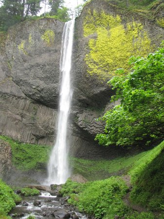 Columbia Gorge Scenic Highway: The Latourell falls, bottom viewl