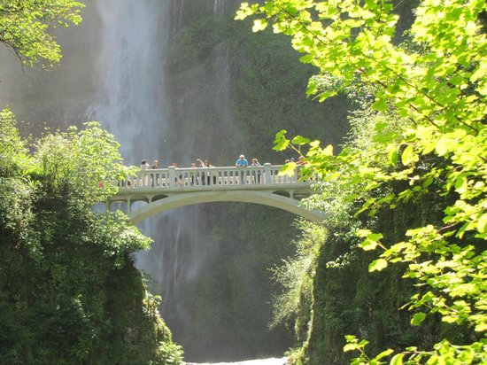 Columbia Gorge Scenic Highway: Multnomah bridge with falls in the background
