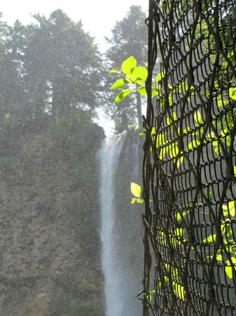 Columbia Gorge Scenic Highway: Another view of Multnomah, trying to protect from the sun.